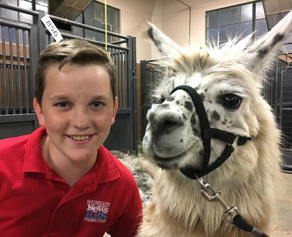 Ryan with a llama at the Minnesota State Fair