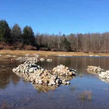 Limestone rubble piles added to the lake bed help to improve fish habitats and water quality.