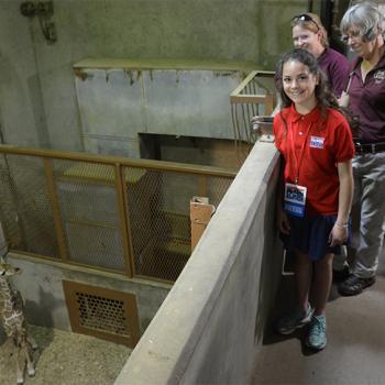 Sadie visits Bogey, a baby giraffe, at the Memphis Zoo.
