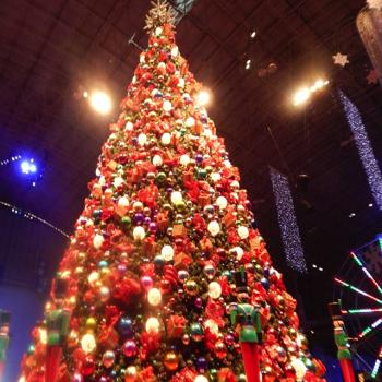 Christmas tree at the Navy Pier Winter WonderFest
